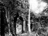 Angkor Thom - Porte Nord